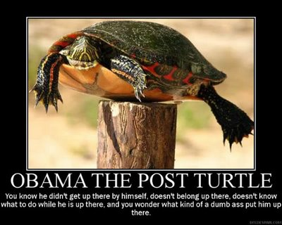 obama post turtle